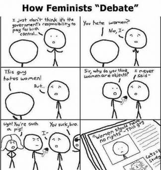 How Feminists Debate Brilliantly Summed Up By One Cartoon